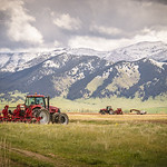 Farming in Big Sky Country